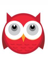 SEOOWL - intelligent SEO solutions founded